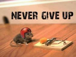 never-give-up-mouse